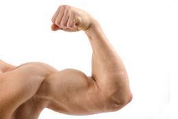 Flex ARM